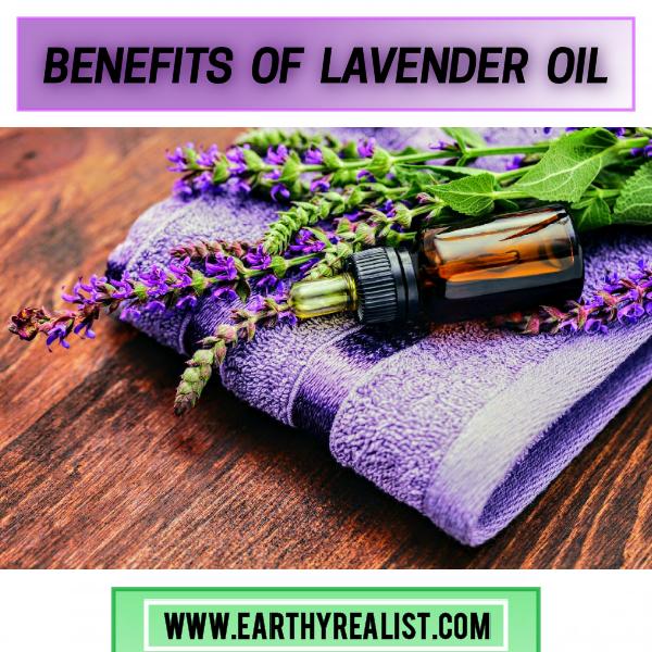 Lavender Oil Uses &Benefits